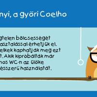 Sanyi, a győri Coelho