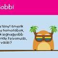 Buzilobbi
