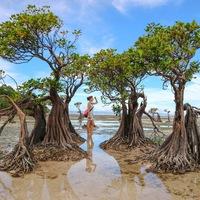 Indonézia misztikus szigete: Sumba
