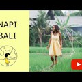 Elindul a Napi Bali