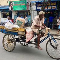 India. Az ország, amelyben lüktet az élet