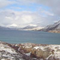 Márciusi tél Norvégiában: zöld óceán, hófödte csúcsok, rénszarvasok