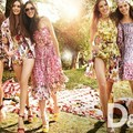 D&G's Floral Collection