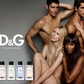 The new fragrances by D&G...
