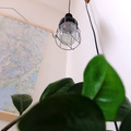 Stek és a lámpa
