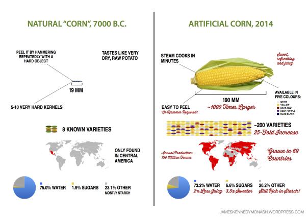 artificial-natural-corn3.png