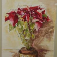 Ajándék  - Merika blognyitási ajándéka