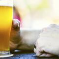 Para-Kovács Imre: Az első sör