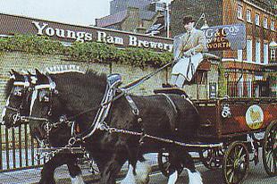 Lovak a sörfőzés történetében