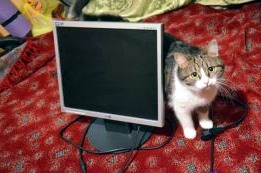 lg-flatron-t700b-monitor-.jpg