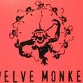 12 majom, 13 epizód
