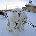 A 7 leghidegebb város - extrém fagyos fotók!