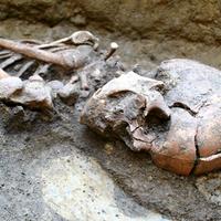 Nyolc rejtélyes holttest -  Egy Tisza-parti település sorsa a hun korban