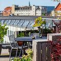 Imádnivaló zöld oázis a dán főváros szívében
