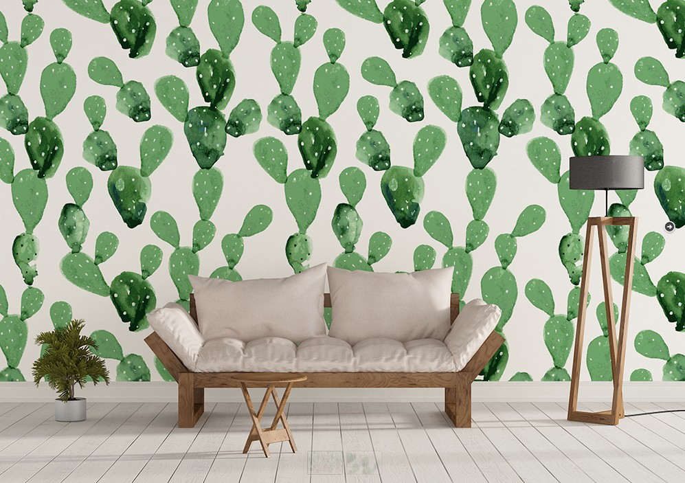 kaktusz-ontapados-tapeta.jpg