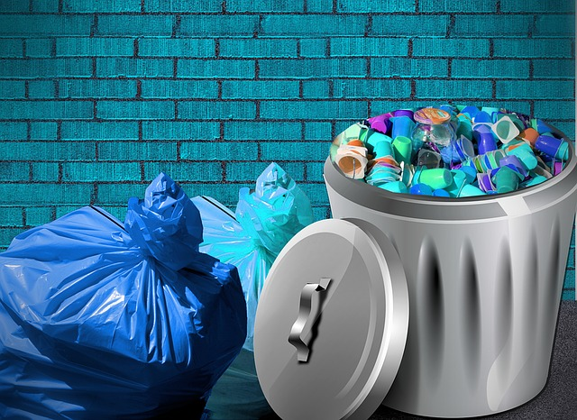 garbage-bag-1256041_640.jpg