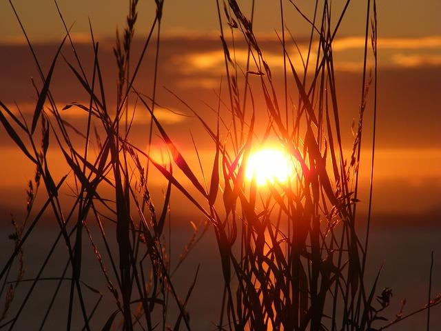 sunset-657148_640.jpg