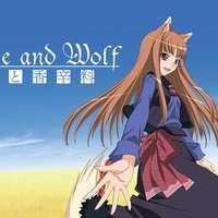 A parfűmárus és a farkasnő kalandjai: Spice and Wolf