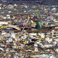 19 éves fiú ötlete mentheti meg a műanyagtól fuldokló vízi állatokat. Vagy nem.