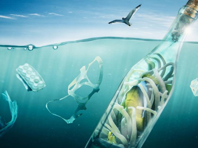 A toxikus mikroműanyag már a te vérkeringésedbe is bejutott!?