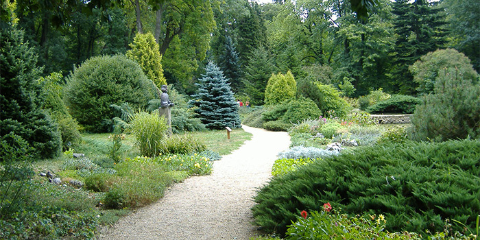 zirci-arboretum.jpg
