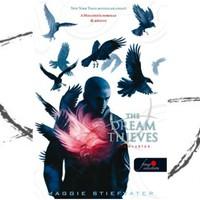 Könyvkritika: Maggie Stiefvater: The Dream Thives - Álomrablók (2013)