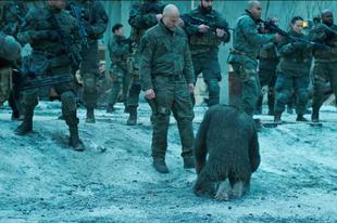 Másodvélemény: A majmok bolygója: Háború / War for the Planet of the Apes (2017)