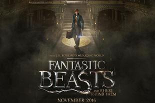 Másodvélemény: Legendás állatok és megfigyelésük / Fantastic Beasts and Where to Find Them (2016)