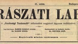 Horváth Imre tudósítása 1913-ból a somogyjádi bortermésről (Borászati Lapok – 45. évfolyam, 41. szám)