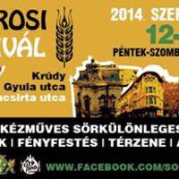 Józsefvárosi Sörfesztivál 2014 ősz