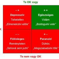 Egy ötéves tartozásom: az OK-kocka