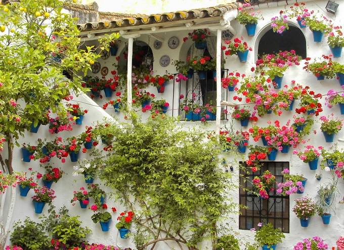 patios-cordobeses-105.jpg