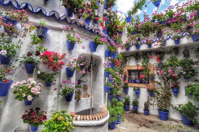 patios-cordobeses-109.jpg