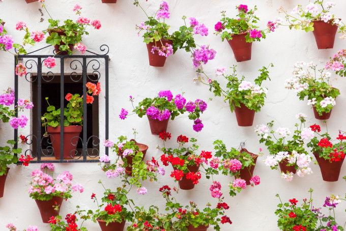 patios-cordobeses-16.jpg