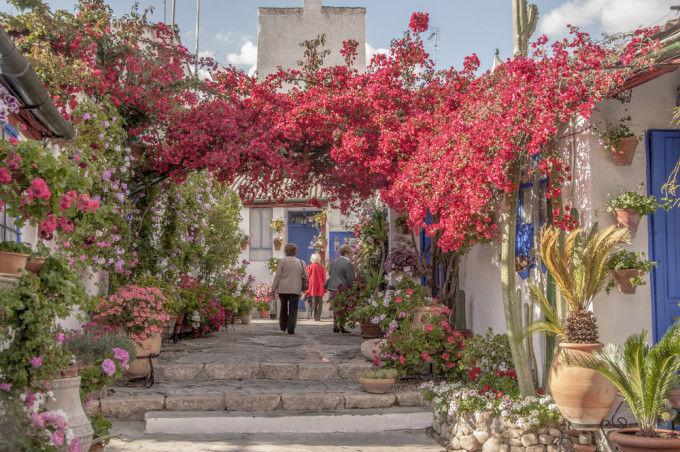 patios-cordobeses-71.jpg