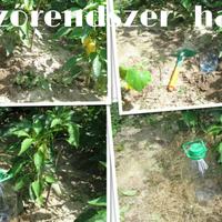 Hatékony vízlepárló-öntöző rendszer kiskertekbe