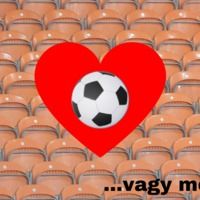 Tényleg kihalóban van a labdarúgó NB1 szeretete?