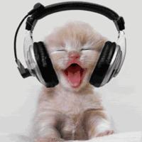 Kriszta: Figyeld a zenét!