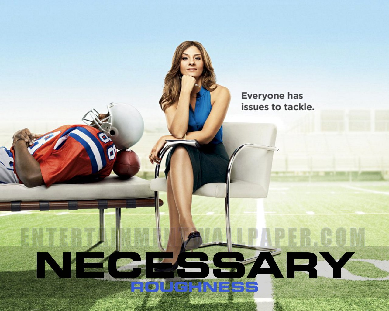 tv-necessary-roughness01.jpg