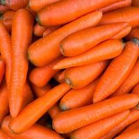 Filléres recept: sárgarépakrém