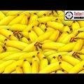 Ezzel a trükkel egy hétig simán sárga és friss marad a banán