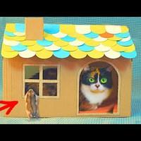 Macskalak házilag! Ezt minden dobozfétises cicus imádni fogja