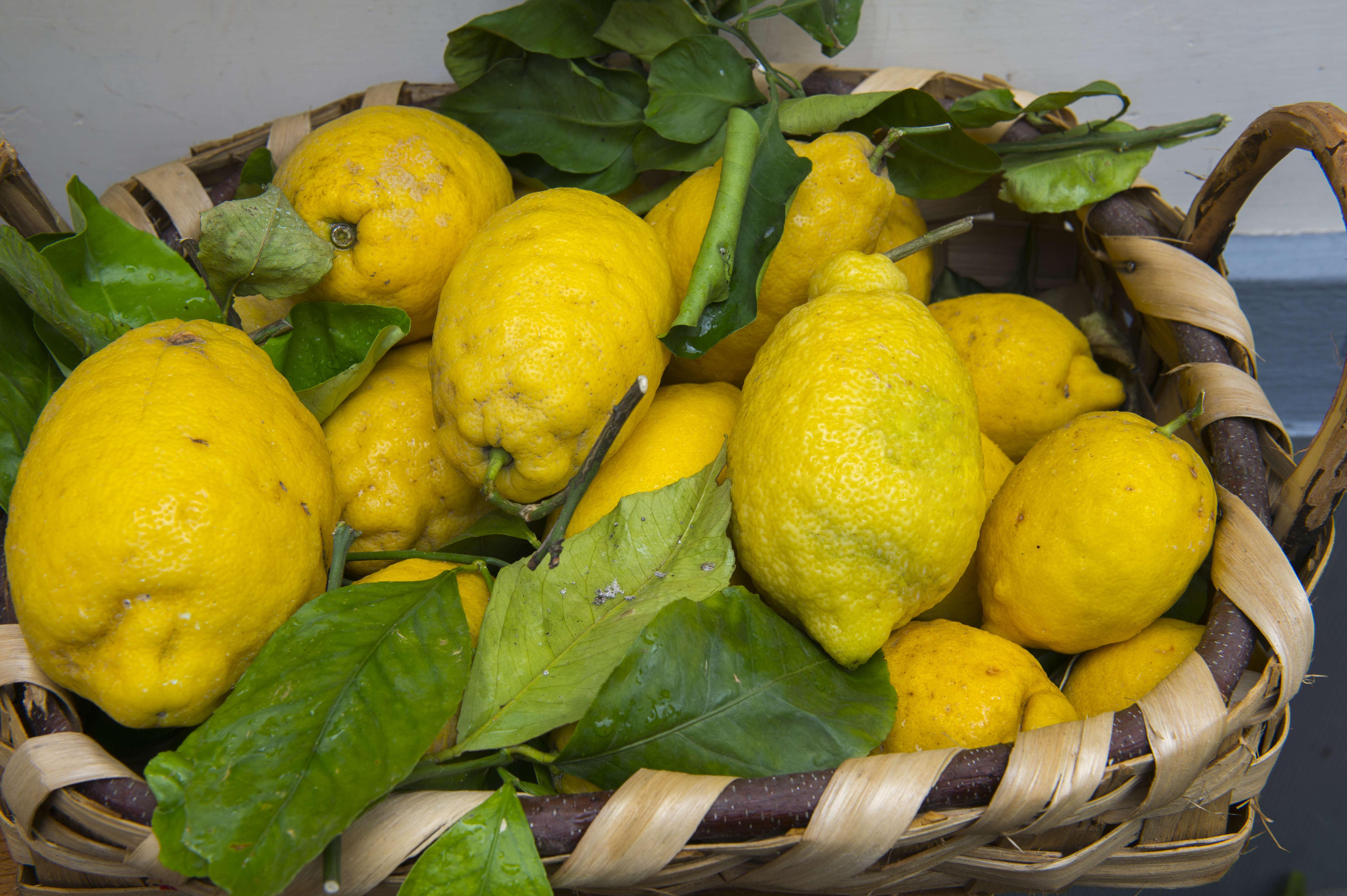 Elképesztő, de igaz: citrommal is lehet tüzet gyújtani