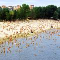Strandolás a város folyóin: Szerbiában lehet, Magyarországon tilos