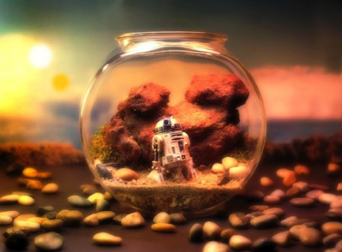 Star-Wars-Themed-Worlds-Glass-Terrariums-by-Tony-Larson-R2D2-02.jpeg