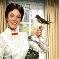 Áfonyás rumpuncs Mary Poppins módra