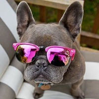 Így vehetsz profin napszemüveget