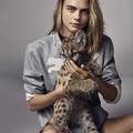 Puma kampány kölyök pumával