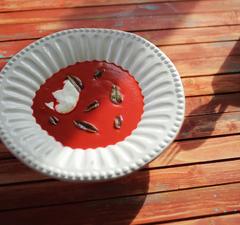 Zé céklakrém-levese