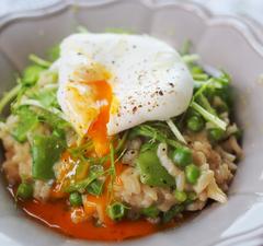 Az 50. adás receptjei: rizses ételek, azaz zöldborsós rizottó, bácskai rizses hús, csirkés-garnélás paella és ázsiai pirított rizs